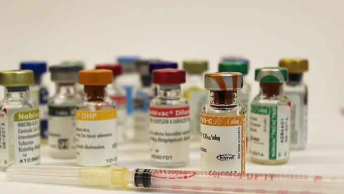 Kisállat védőoltások