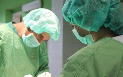 Kisállat sebészeti ellátás