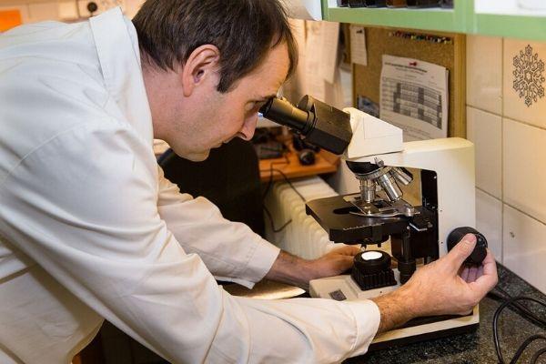 Mikrobiológiai vizsgálat